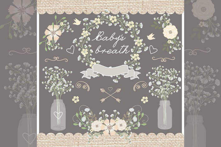 Thumbnail for Vector Rustic baby's breath wedding design