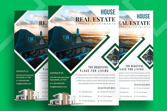 Thumbnail for Real Estate Property Flyer-06