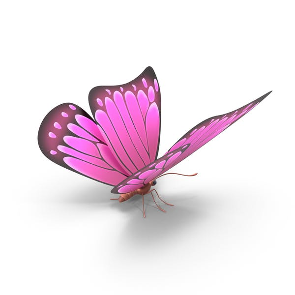 Thumbnail for Pink Butterfly