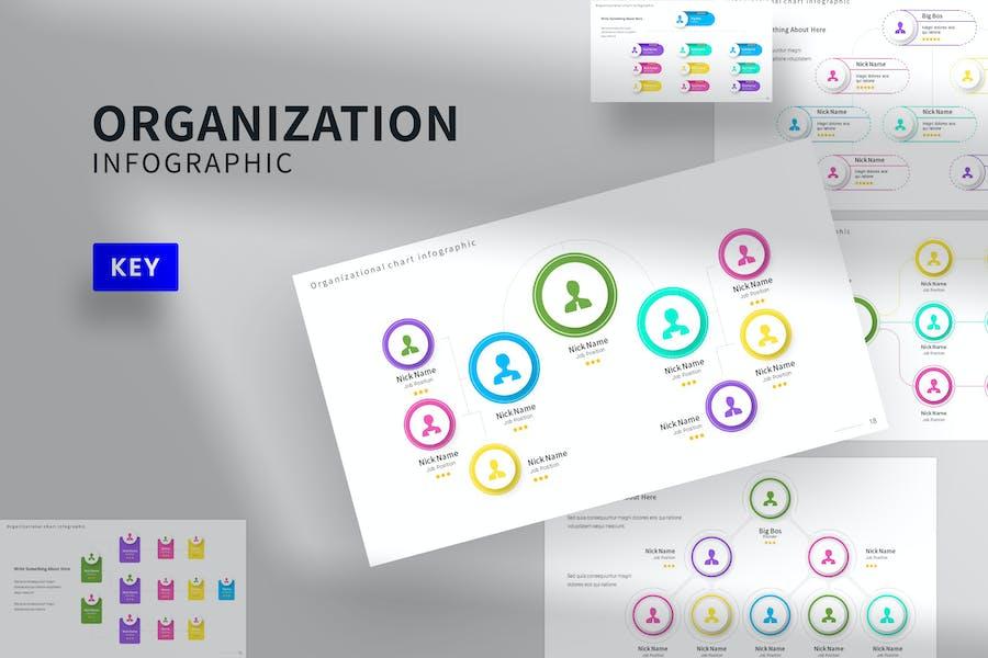 Organisation Infografik Keynote-Vorlage
