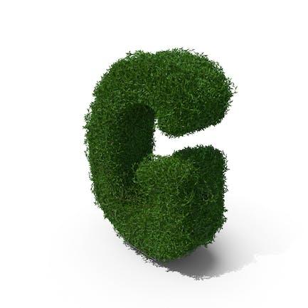 Buchsbaum-Symbol G