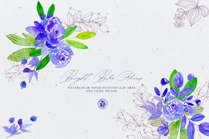 Thumbnail for Ярко-голубые цветы