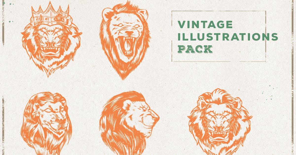 Download Vintage Lion Illustration Pack by ovozdigital