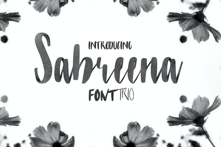 Thumbnail for Sabreena Font 3 in 1 Font