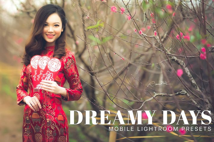 Thumbnail for Dreamy Days Lightroom Mobile Presets