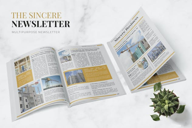 Sincere Business Newsletter