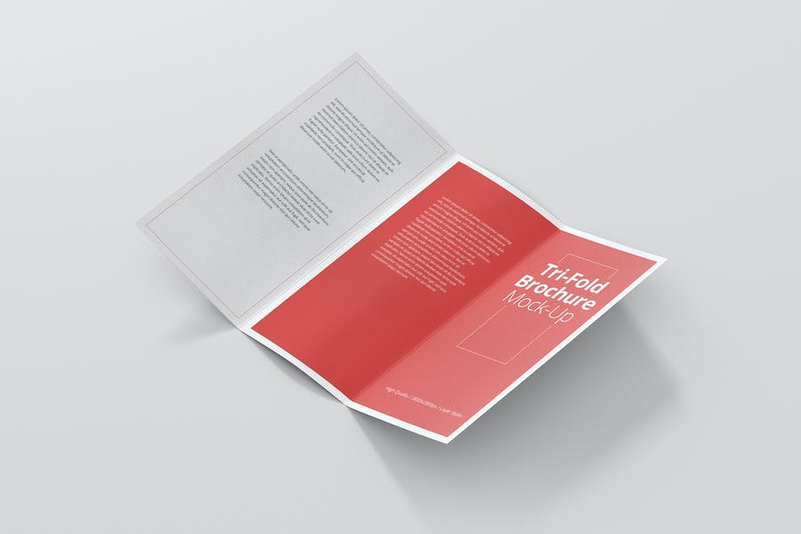 DL Tri-Fold Brochure Mock-Up