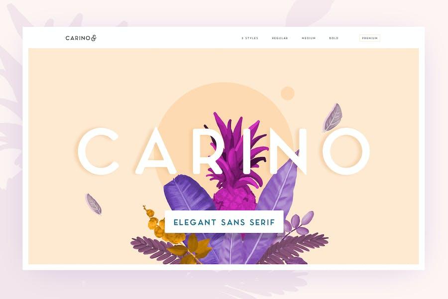 Carino - A Modern Elegant Typeface