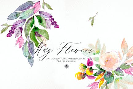 May Flowers - watercolor floral set