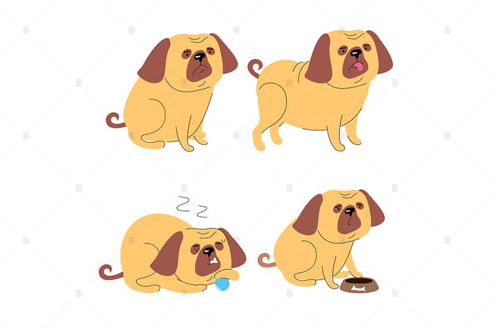 Thumbnail for Cute pug dog - flat design style set of characters