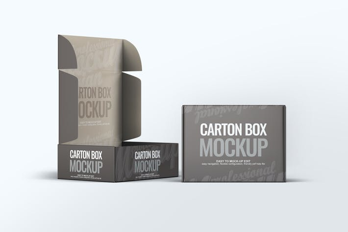 Cover Image For Carton Box Mock-Up