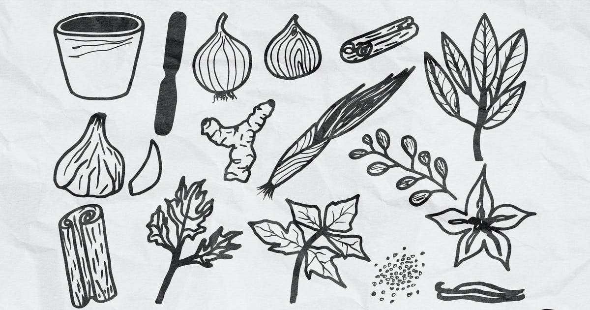 Download Hand Drawn Herbs by yandidesigns
