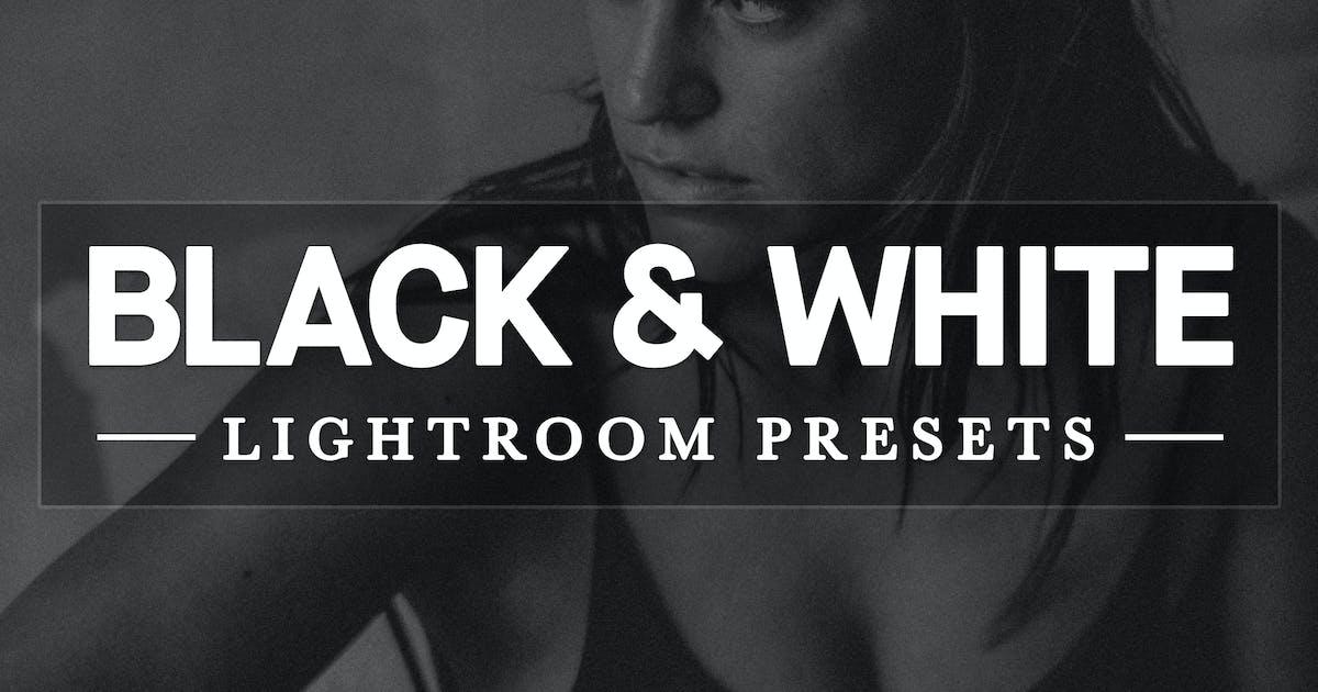 Download Black and White Lightroom Develop Presets by hughadams