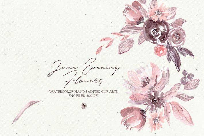 Thumbnail for June Evening Flowers
