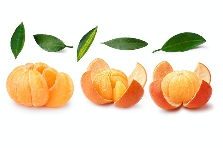 Thumbnail for Set of tangerines
