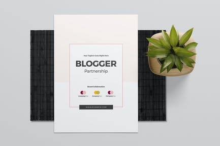 Blogger Partnership Template