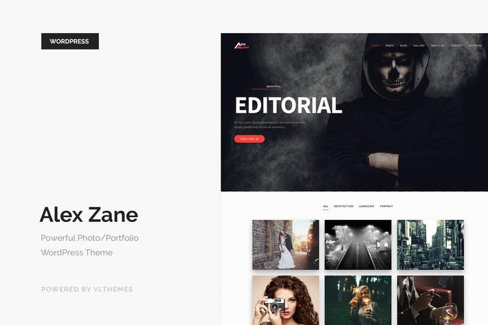 Thumbnail for Alex Zane - Photo/Portfolio WordPress Theme