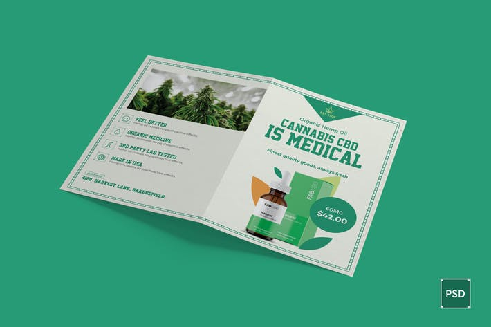 Thumbnail for Cannabis Bi-Fold Brochure PSD Template