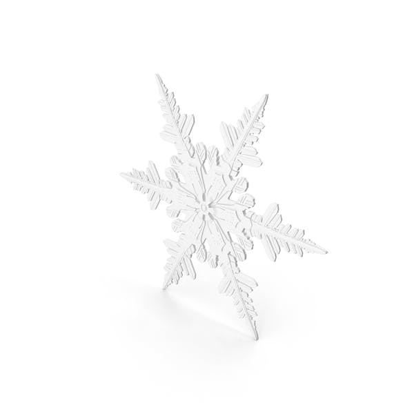 Cover Image for Snowflake