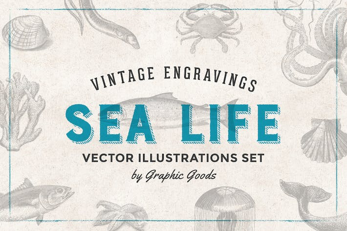 Thumbnail for Fishes & Sea Life - Gravur Illustration Set