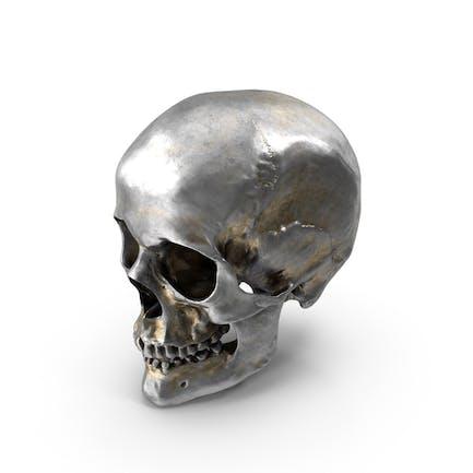 Menschlicher Schädel Eisen-Ri