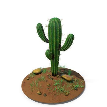 Cactus Single Ground