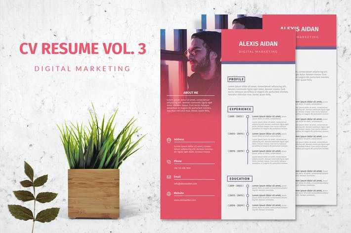 Thumbnail for Modern Clean CV Resume Vol. 3