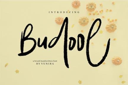 Budool | A Brush Handwritten Font