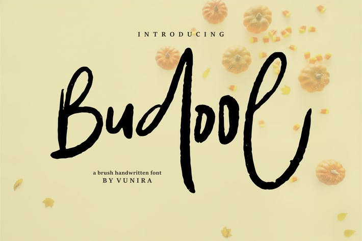 Budool | A Brush Handwritten Font