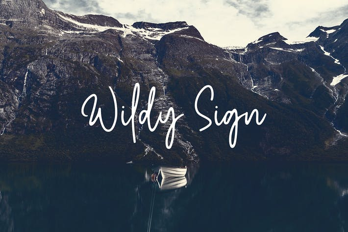 Thumbnail for Wildy Sign