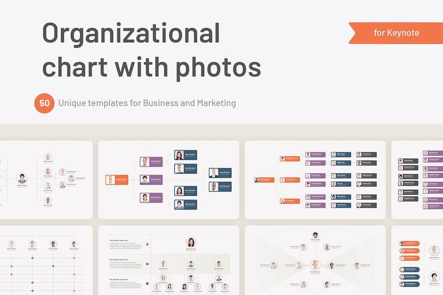 Organizational Hierarchy Chart for Keynote
