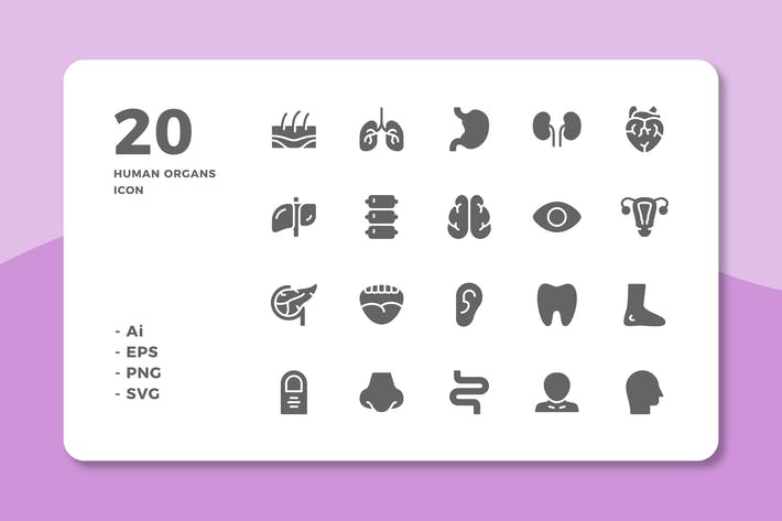 Thumbnail for 20 Human Organs Icons (Solid)