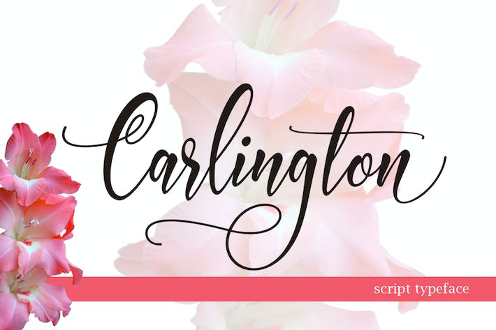 Thumbnail for Script CARLINGTON