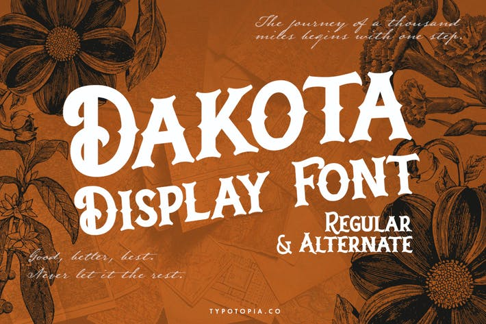 Dakota Display Font