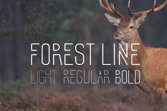 Thumbnail for Forest Line Font Condensed