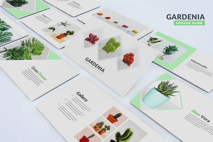 Thumbnail for Gardenia - Google Slides Template
