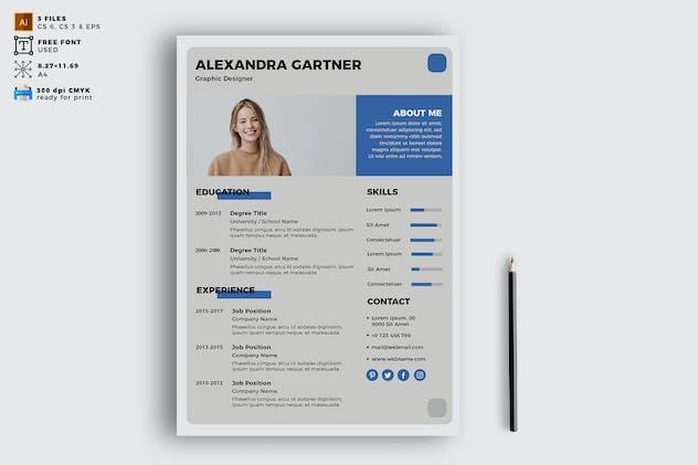 Elegant CV Resume Vol. 10