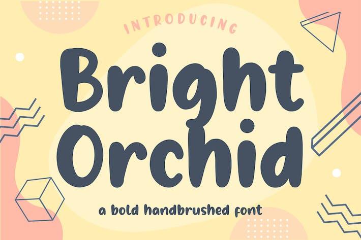 Thumbnail for Orquídea Brillante YH