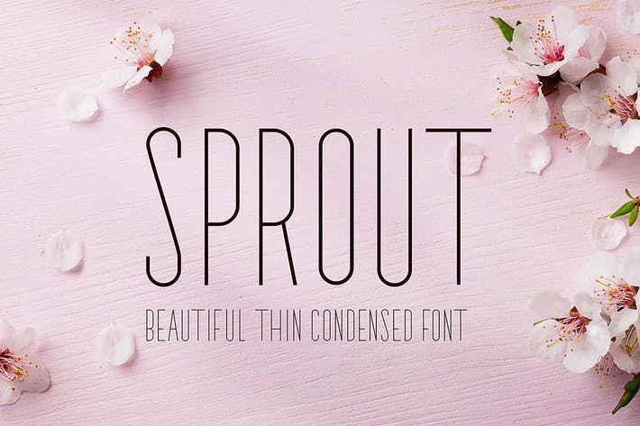 Cover Image For Sprout - Sans Serif
