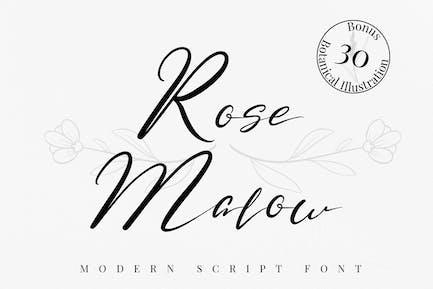 Rose Malow - Fuente de escritura moderna