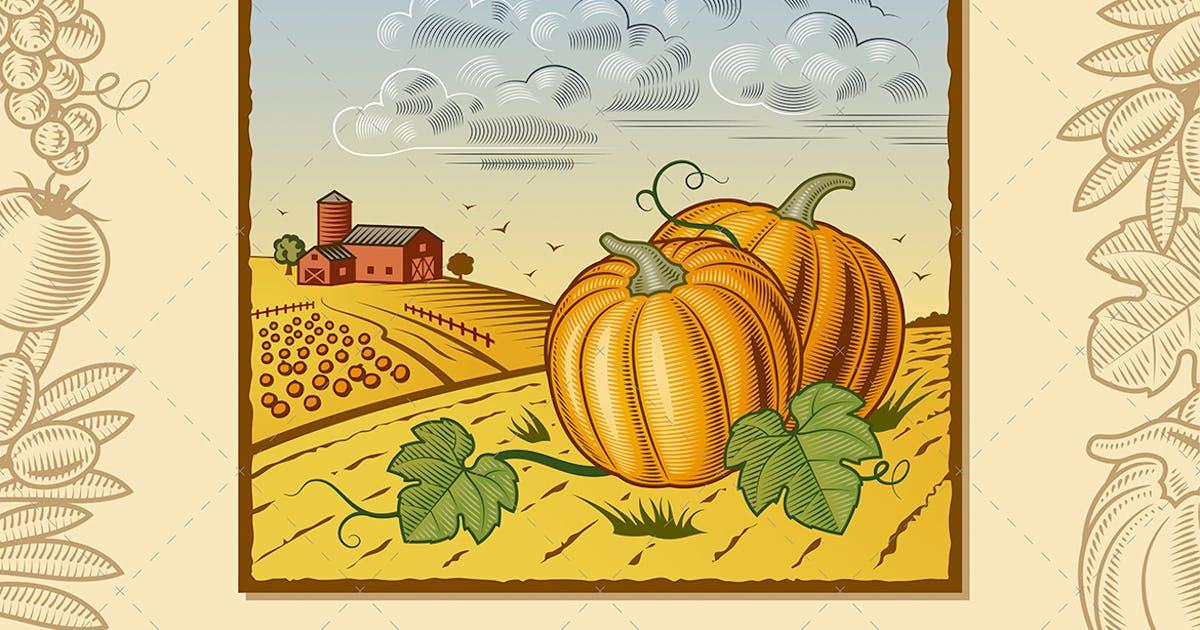 Download Landscape With Pumpkins by iatsun