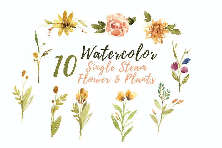 Thumbnail for 10 Watercolor Single Stem Flower and Plants