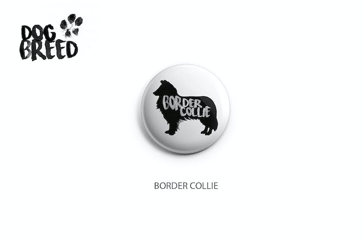 Thumbnail for Border Collie