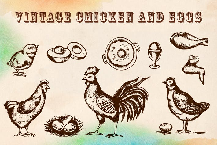 Vintage Chicken and Eggs