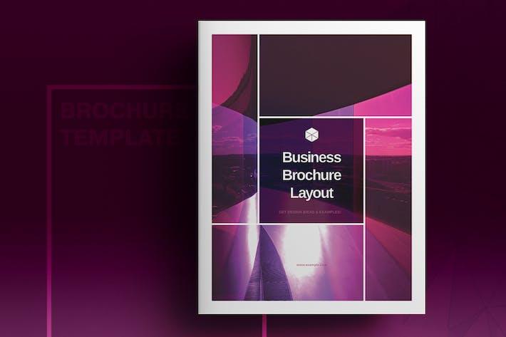 Thumbnail for Présentation de la brochure Violet