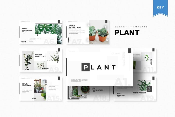 Thumbnail for Plant | Keynote Template