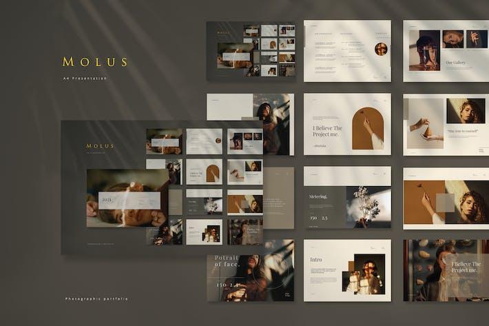 Thumbnail for Cd Molus Portfolio Presentation