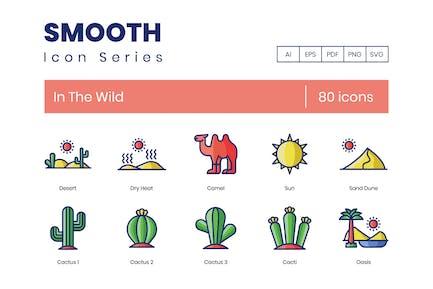 80 In der Wild-Symbole - Smooth Series