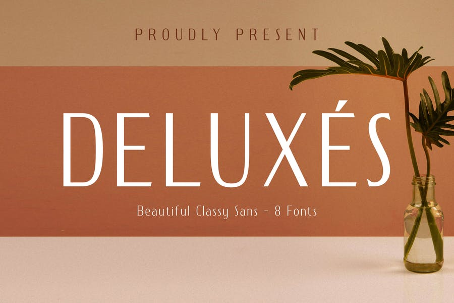 DELUXES - Beautiful Classy Sans