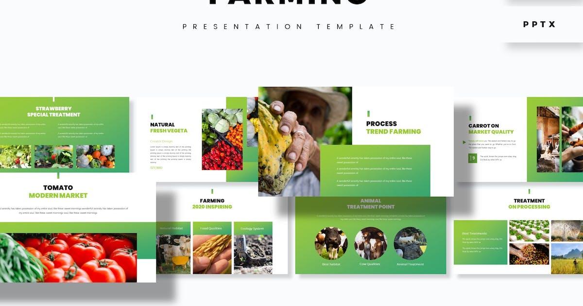 Download Farmino - Presentation Template by aqrstudio